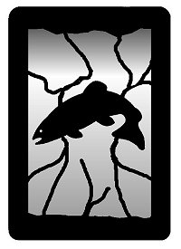 Small Accent Mirror Wall Art- Trout Design