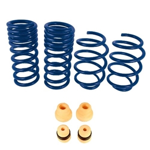 M-5300-X 2015-2020 Mustang Ford Performance 1 Inch Street Lowering Springs
