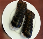 5 x (8 to10) ounce Cold water lobster tails (Shipping included)