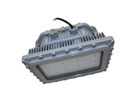 EVE/James Hazardous Location LED, D Series, 100 Watt- View Product