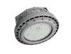 EVE/James Hazardous Location LED, C Series, 150 Watt- View Product