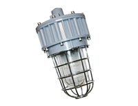 EVE/James Hazardous Location LED, G Series, 30 Watt- View Product