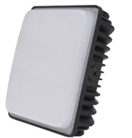 LEDi2 LED Canopy Lights, 60 Watt- View Product