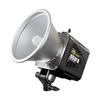 Alien Bees B1600 Single Light Package