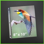 8x10 Sheet Protectors for Photos for use with binder & album