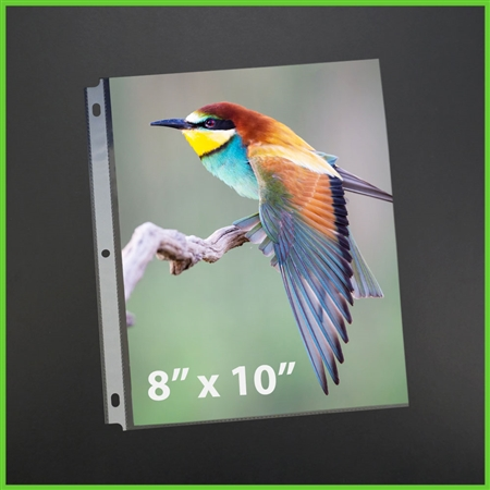 Scrapbook 8x10 Photo Sleeves 8 X 10 Photograph Size Storage Albums