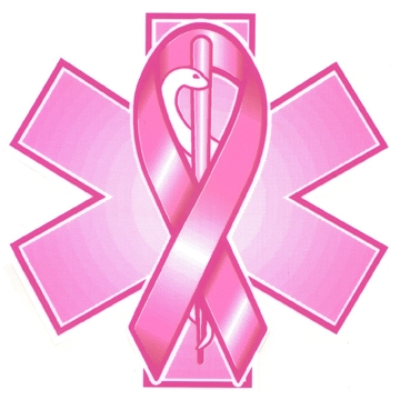 Pink Ribbon Star of Life Decal