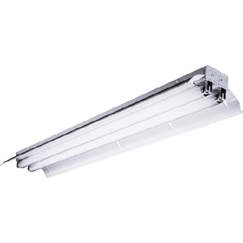 Columbia Lighting CSR8-296HO-ST-EPU 8\' Industrial Light, Two Lamps ...