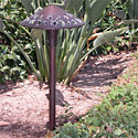 "Focus Industries AL-16-BRT 12V 18W 8"" Stars and Moons Hat, Area Light, Bronze Texture Finish"