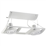 Juno Track Lighting XT30201WH AVIO Two Lamp - Line Voltage 35-75W PAR30 Unit, White Color