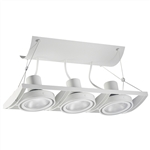 Juno Track Lighting XT30301WH AVIO Three Lamp - Line Voltage 35-75W PAR30 Unit, White Color