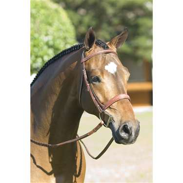 Rodrigo Pessoa® Fancy Wide Noseband Show Bridle w Raised Fancy Stitched Laced Reins
