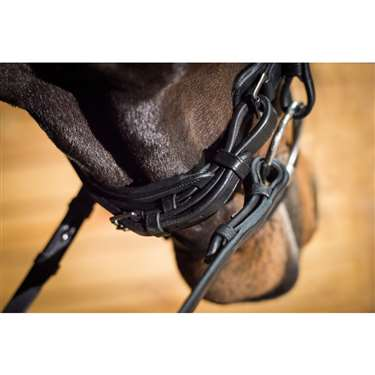 Ovation® ATS Crank Caveson Dressage Bridle with Flash