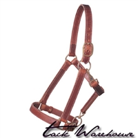 Leather Draft Horse Halter, Average