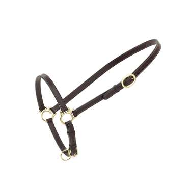 Ovation&reg Leather Traditional Grooming Halter