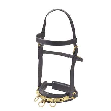 Camelot&reg Leather Lunging Cavesson