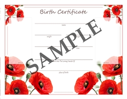 Homebirth Birth Certificate