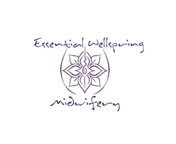 Essential Wellspring Midwifery Custom Birth Kit