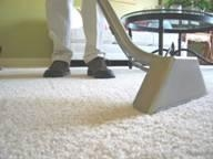 Non Toxic Carpet and Upholstery Cleaning Service