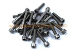 Honda Fireblade CBR Stainless Steel Engine Casing Bolts