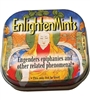 Enlighten Mints