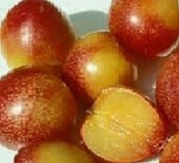 PLUMS LARGE RED USA 4LB CONTAINER