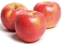 APPLES HONEY CRISP 6LB BAG