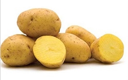 POTATOES YELLOW 10LB BAG