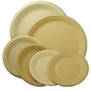 BAGASSE COMPOSTABLE PLATES & BOWLS ALL SIZES