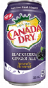 CANADA DRY BLACKBERRY GINGER ALE. (12)