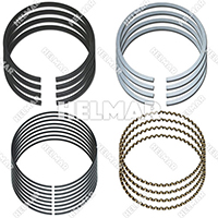 1361709 PISTON RING SET (.25MM)