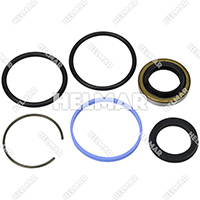 9125410330 POWER STEERING O/H KIT