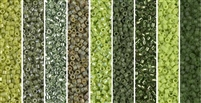 Cilantro Monday - Exclusive Mix of Miyuki Delica Seed Beads
