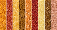 Masala Monday - Exclusive Mix of Miyuki Delica Seed Beads