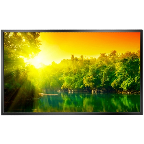"43"" High Brightness Professional Monitor"