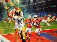 The Catch - Super Bowl XLIII