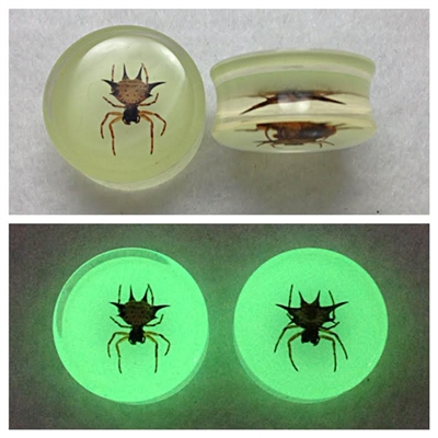 UV Stable Acrylic Glow in the Dark Spider Plugs