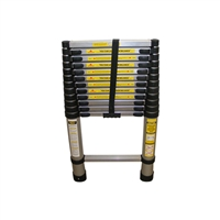 Renegade 12' Aluminum Telescoping Ladder RGDTL12