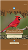BLUE SEAL BIRDER`S SECRET CARDINAL MIX 8LB