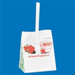 APPLE BAG 1/2 PECK CASE
