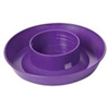 LITTLE GIANT 740 SCREW ON BASE FOR QUART WATERERS, PURPLE