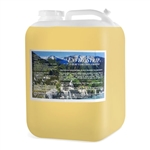 CCI EnviroStrip Emulsion Remover - 5 Gallon