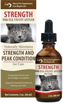 Wapiti Labs - Cat Strength Formula - 2 oz Glycerite