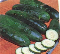 Cucumber for Slicing