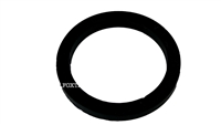 BFC-ECM-Wega Filter Holder Group Gasket | 73x57x8mm
