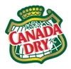 Canada Dry Diet Ginger Ale Soda Cans, 12 oz (12 pack)