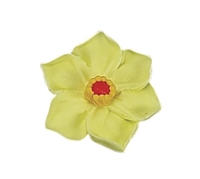 Large Daffodil - Assorted Colors