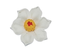 Large Daffodil - White with Yellow