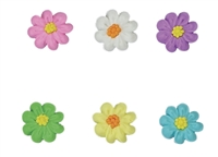 Flat Daisy Assortment - Small