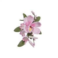 Australian Cymbidium Hyacinth Spray - Pink